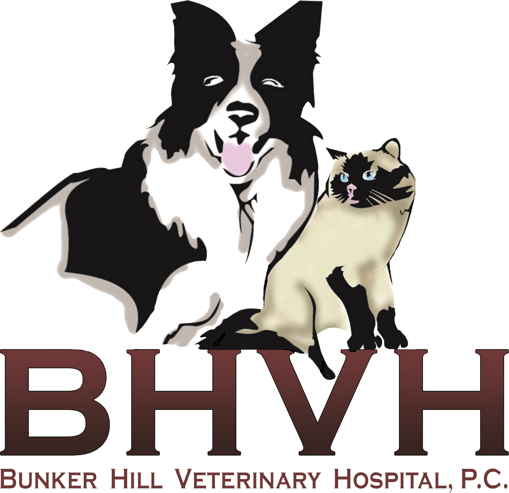 Bunker Hill Veterinary Hospital, P.C.
